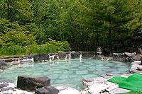 川湯温泉旅館組合長の宿で岩盤欲浴も備えた大浴場の他に貸切露天風呂や混浴大露天風呂も!勿論どれも硫黄臭漂う源泉100%掛け流しの湯。